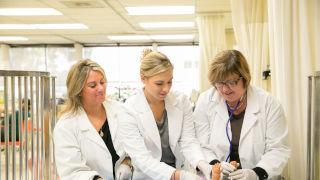 College of Nursing - Pediatric M.S.N. Webinar